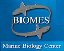 Visit the Biomes Marine Biology Center web site.