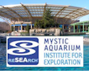 Visit the Mystic Aquarium Institute for Exploration